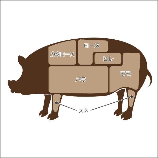 豚肉の部位